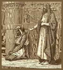 fariseopubb